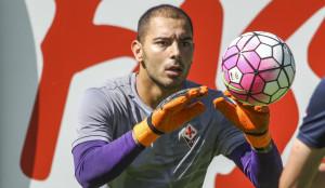 Fiorentina Sepe